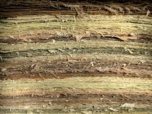 eveline-kolijn-paper-landscape